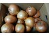 淡路島の玉ねぎ 秀品 5kg