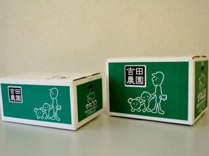 吉田農園の河内晩柑 4kg(10~15玉)