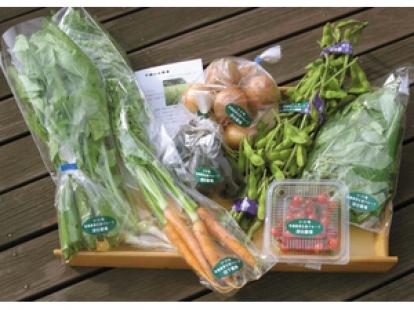 埼玉県 小川町の野菜セット 1箱
