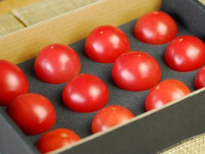 下川のフルーツトマト