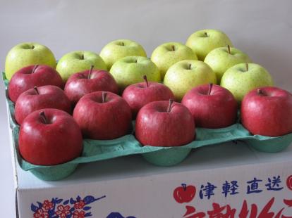 特選サンふじ+王林 5.5kg (11~18個)