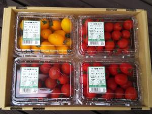 大塚ファームの有機ミニトマト4種