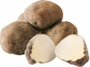 JA丹波ひかみ 山の芋