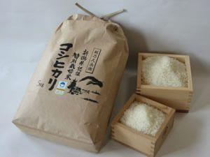 新潟 安中農園のコシヒカリ(新潟県認証特別栽培米)